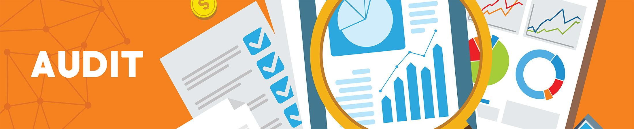 Audit Internal Banner graphic