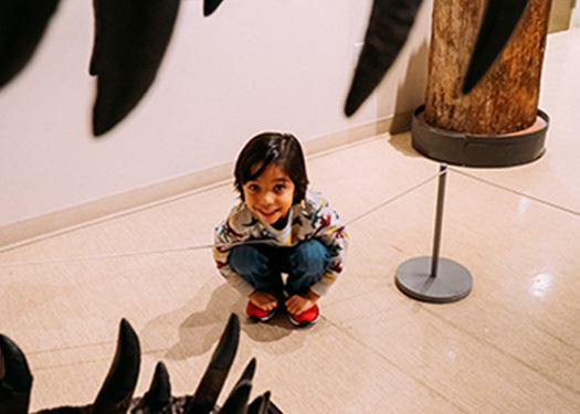 kid at the museum