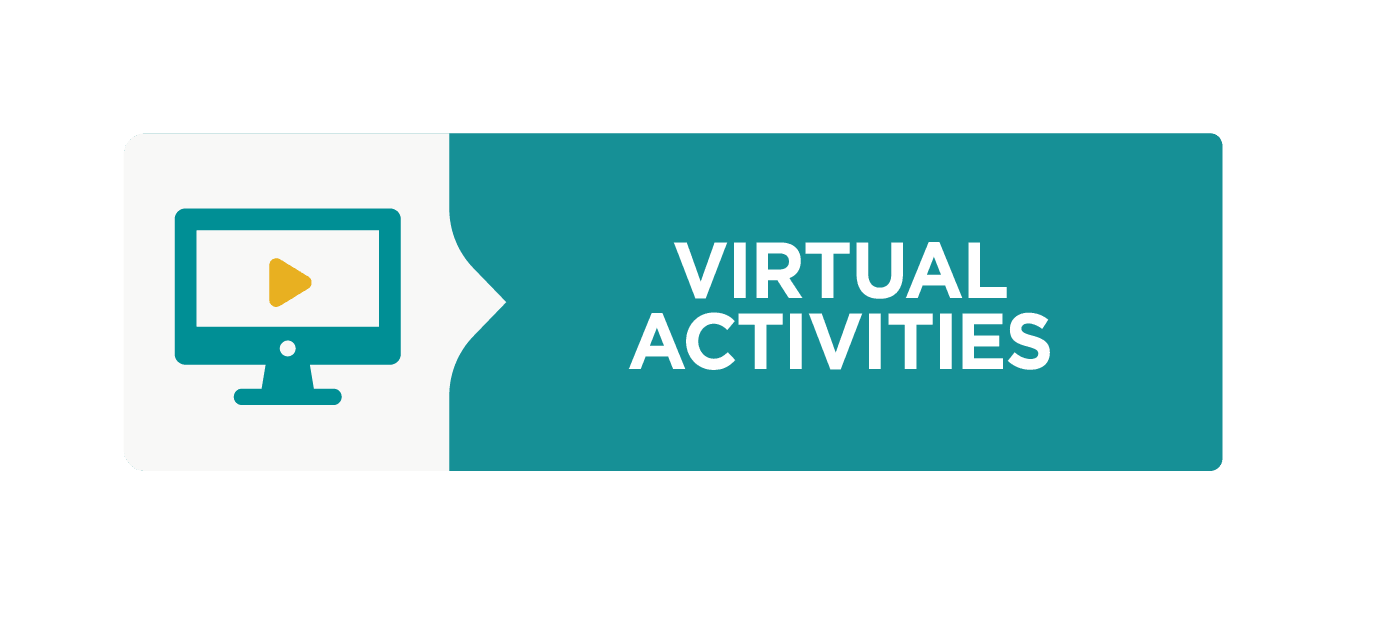 Virtual Activities Icon, represented by a computer monitor with the play triangle